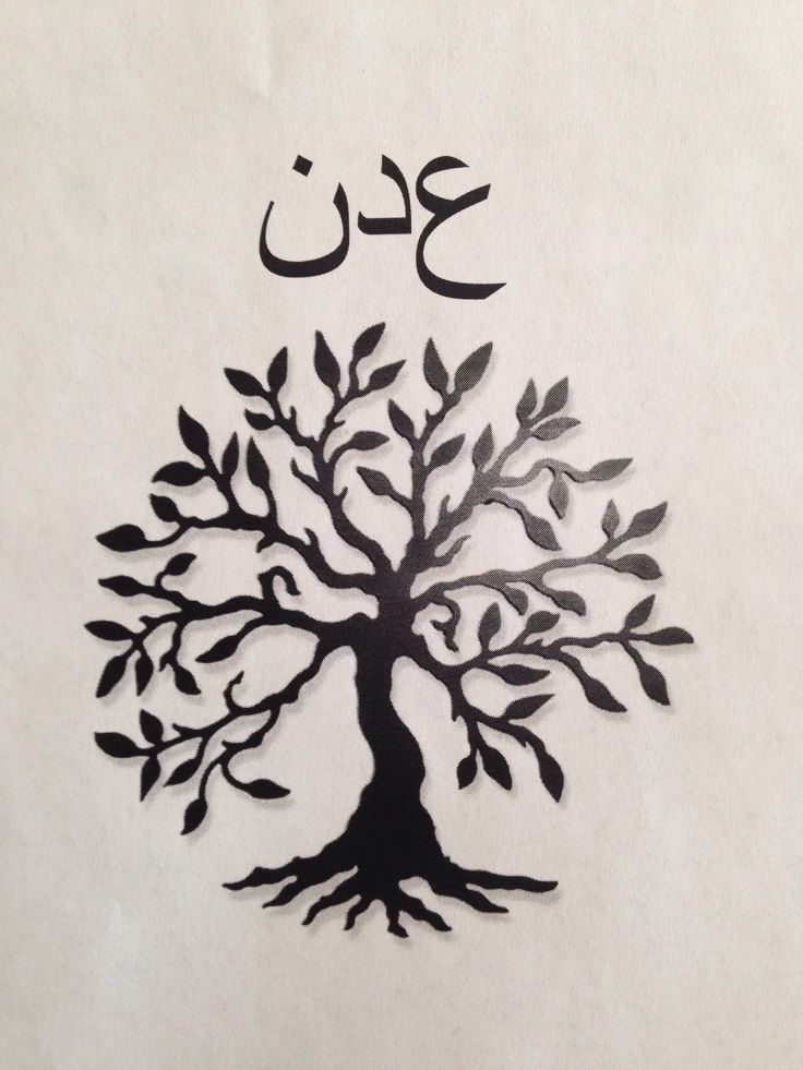 Aden Written In Arabic And An Olive Tree 193 Rvore Da Vida