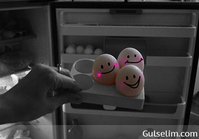 Yumurtaların hikayesi komik yumurtalar komik resim funny eggs story 19