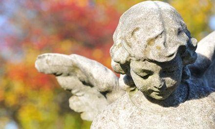 Intermezzo visites à Paris : Visite du cimetière du Père-Lachaise pour 2, 4 ou 6 personnes: #PARIS 10.00€ au lieu de 20.00€ (50% de…