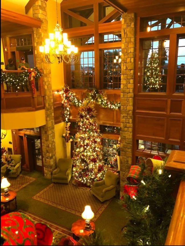 The Pool Place Chattanooga La Inn Tn Christmas