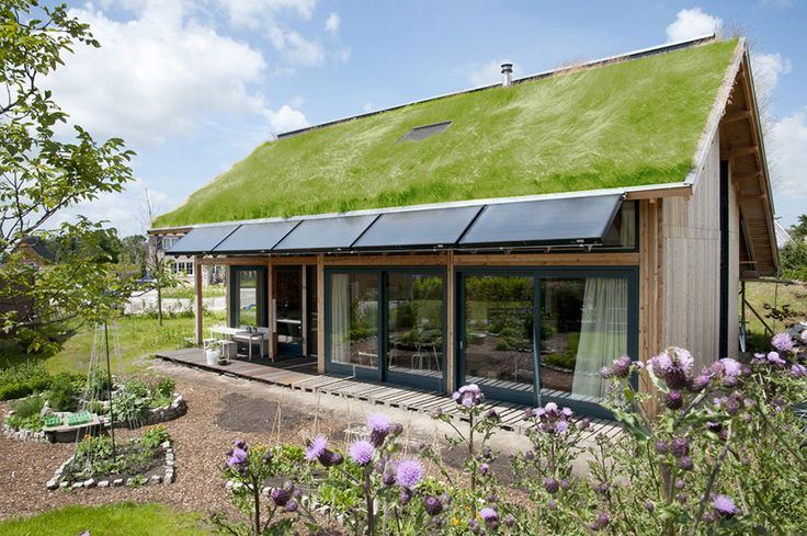 """Sustainability -- This small dwelling utilizes a """"green"""" roof, photo-voltaic panels, and what appears to be a small backyard garden to be more sustainable. On top of that it is also quite architecturally attractive. Being green: An idea that will never get old."""