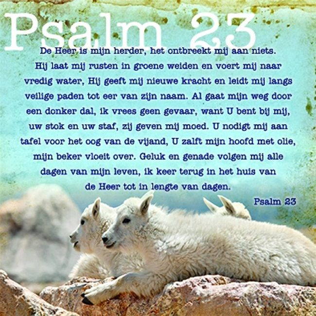 Psalm 23 De Heer is mijn herder, het ontbreekt mij aan niets. Hij laat mij rusten in groene weiden en voert mij naar vredig water, Hij geeft mij nieuwe kracht en leidt mij langs veilige paden tot eer van zijn naam. Al gaat mijn weg door een donker dal, ik vrees geen gevaar, want u bent bij mij, uw stok en uw staf, zij geven mij moed. U nodigt mij aan tafel voor het oog van de vijand, U zalft mijn hoofd met olie, mijn beker vloeit over.
