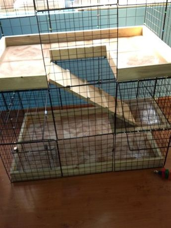Rabbit habitat in the makes - BinkyBunny.com - House Rabbit Information Forum - BinkyBunny.com - BINKYBUNNY FORUMS - HABITATS AND TOYS