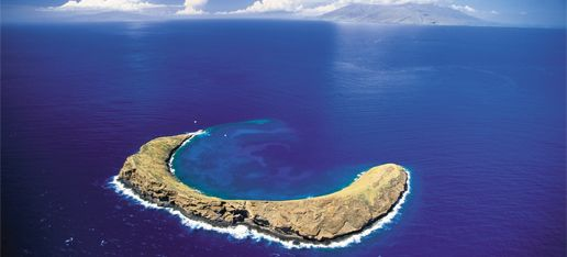 Molokini, Hawaii - best place for snorkeling! Would love to go back someday!