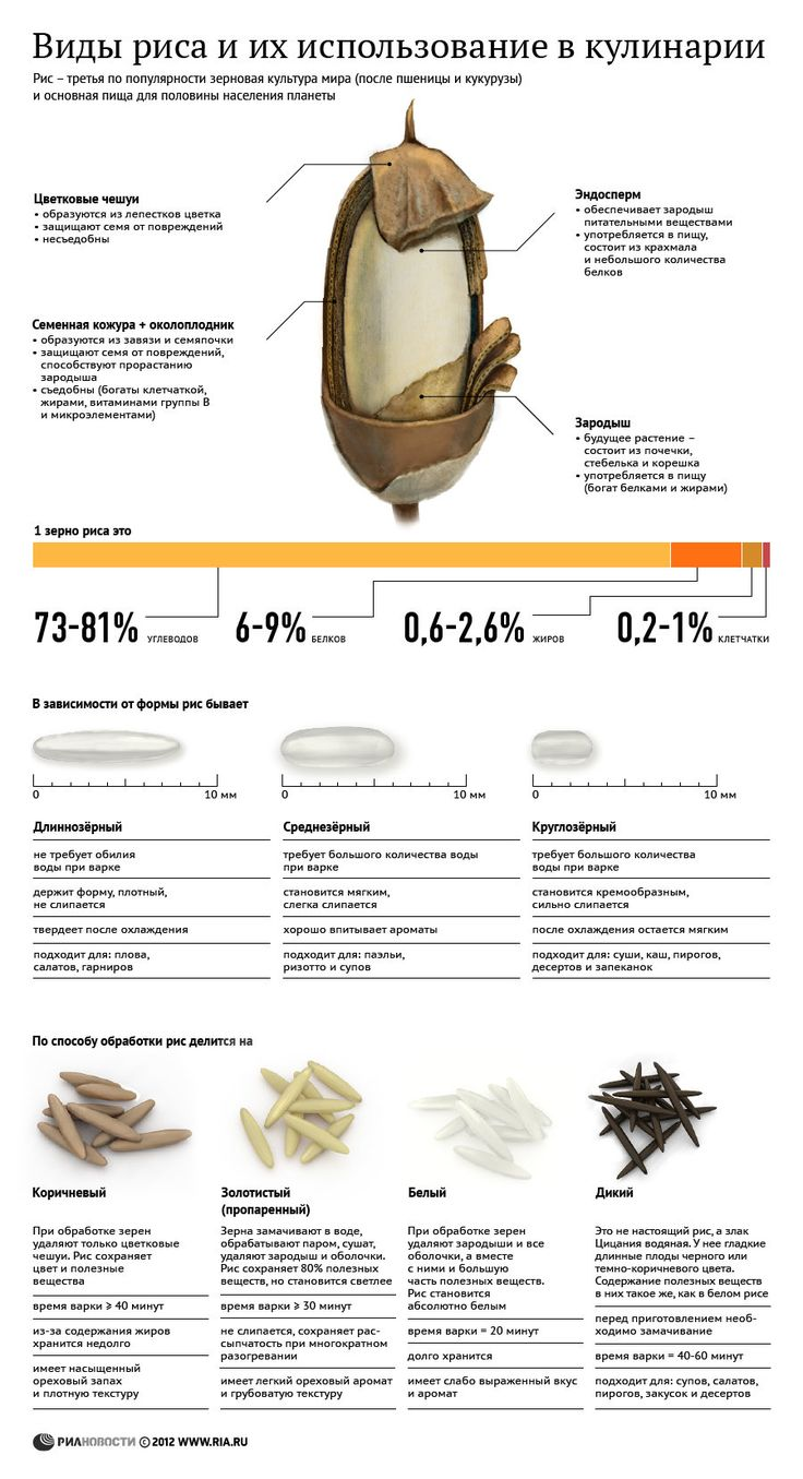виды риса и его использование в кулинарии