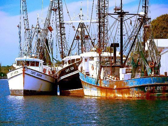 Fishing boats tarpon springs salt life born pinterest for Tarpon springs fishing