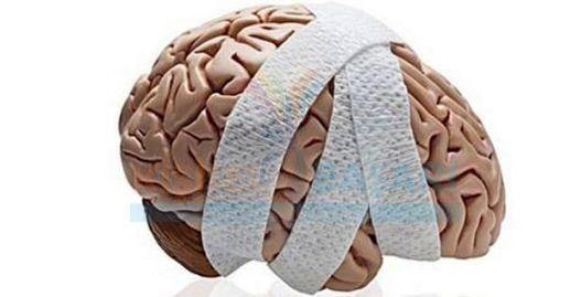 Droga pode restaurar as memórias após uma lesão cerebral