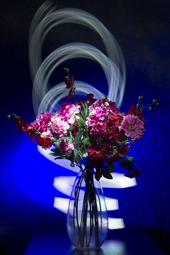Lightpainting with some flowers