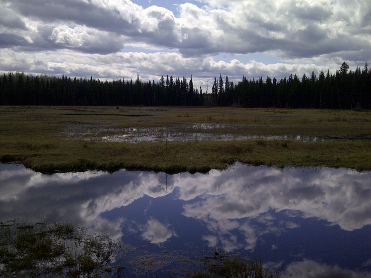 Eskers Provincial Park... By far, one of my favourite year-round trails. Beautiful no matter what season you're on it.