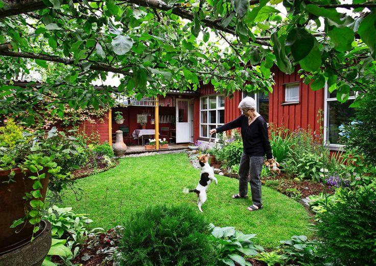 Inspiraatiota muutoksesta – näin onnistui Nannan pienen pihan uudistaminen   Meillä kotona
