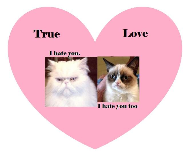 90 best Snarky Valentines images on Pinterest  Valentine day
