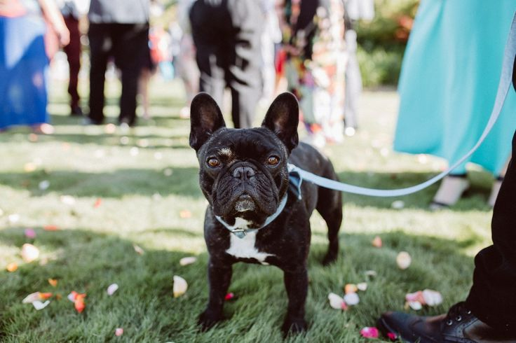 Bart at our wedding day