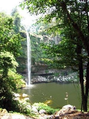 Cascadas Agua Azul, Misol há y Ruinas de Palenque