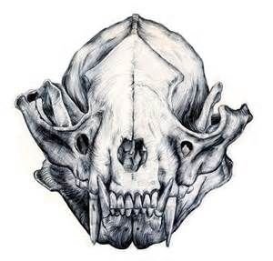 dog skull drawing - Searchya - Search Results Yahoo Canada Image Search Results