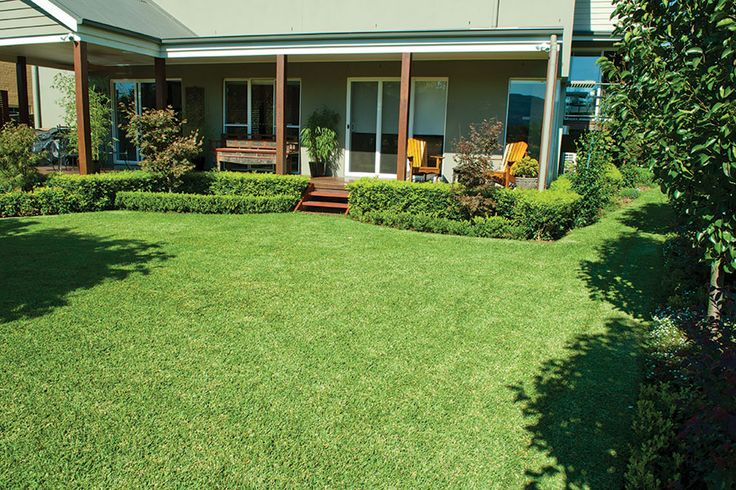 Turf Costs Compared to Other Surfaces