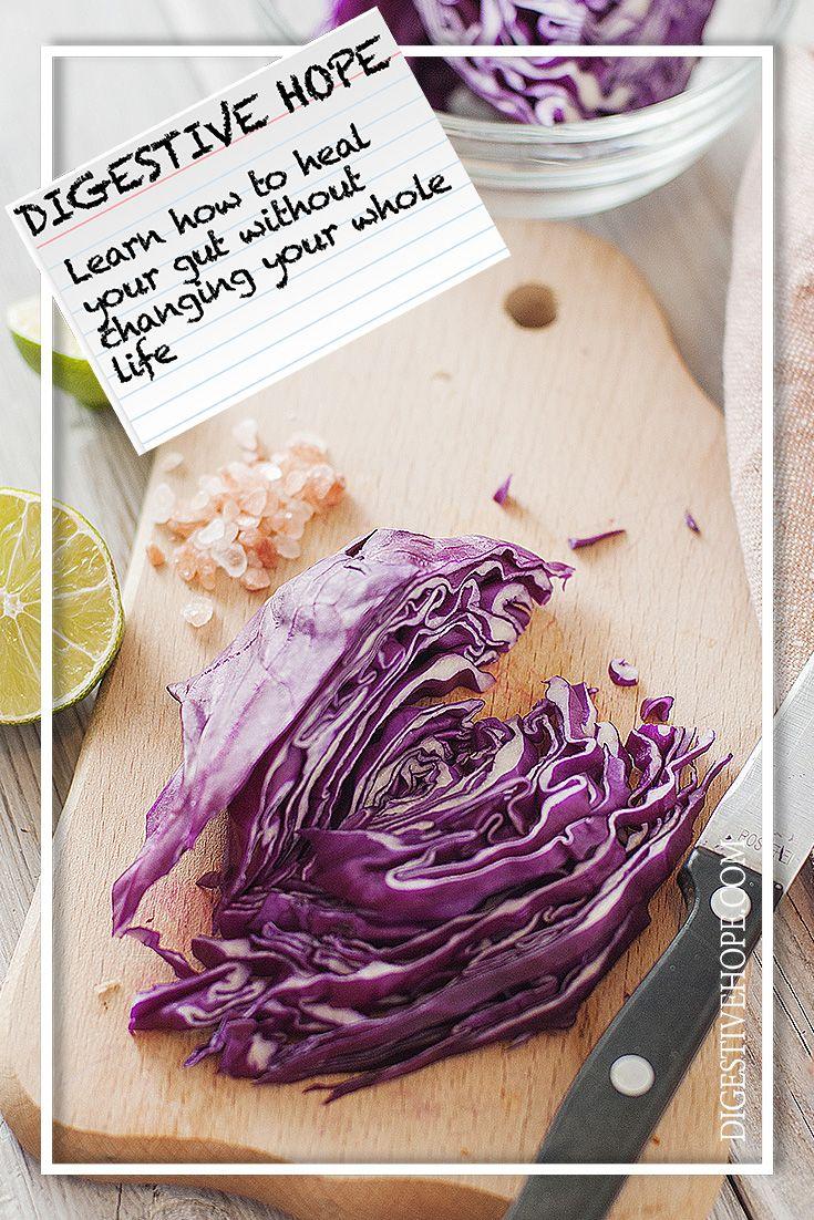 GUT HEALTH 101 -    Purple Sauerkraut from    www.digestivehope.com