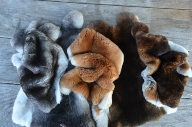 The beautiful Rex furs by Rexcellence Design! www.rexcellence.hu