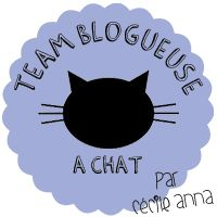 TEAM BLOGUEUSE A CHAT