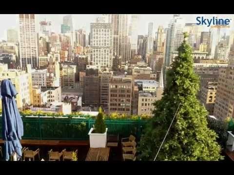 Live Webcam New York - Time Lapse
