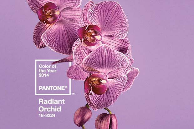RADIANT ORCHID - Pantone 2014