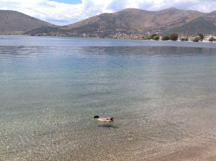 Almyropotamos,Evia,Greece