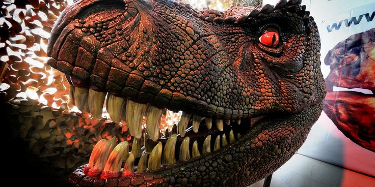 Dinostar - The Dinosaur ExperienceDinoStar - Hull We offer a couple of alternatives for home-educated children which might interest you.  For visits to our museum we offer a price of £1 per person for pre-booked group visits.  Such visits can take place when the museum is open (Sundays and school holidays) or we will open 'specially during term time.  Term-time visits are subject to availability as we can only accommodate one group at a time.    Alternatively we have run Dinosaur Workshops…