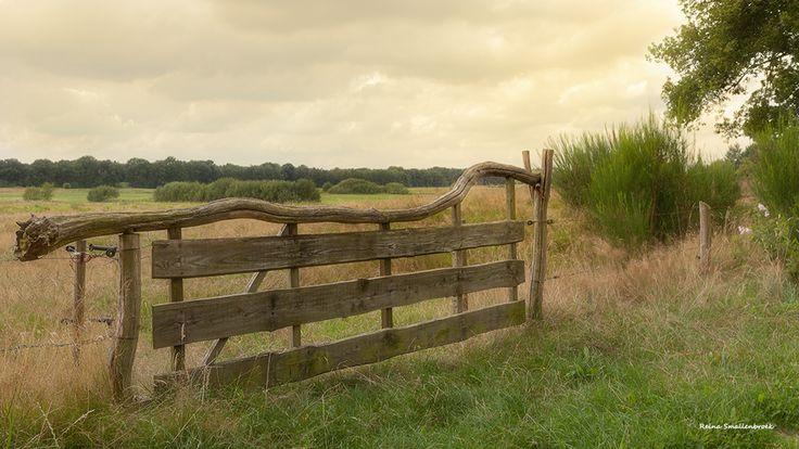 Rustic fence - Rustiek Hek #Landscape  #Drenthe #Netherlands #Fence