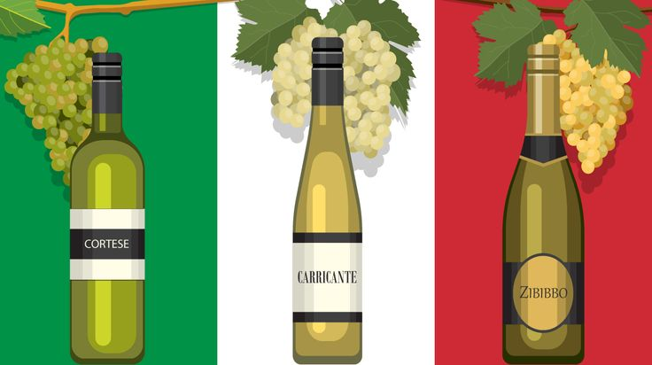 Italy is known for its delicious cuisine and amazing wine, but how much do you actually know about the different grapes that go into each glass of vino? Use this guide to learn about five popular grapes used to make Italian white wine!