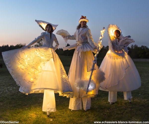 Echassiers blancs vêtus de lumière pour une parade lumineuse et poétique. http://www.echassiers-blancs-lumineux.com