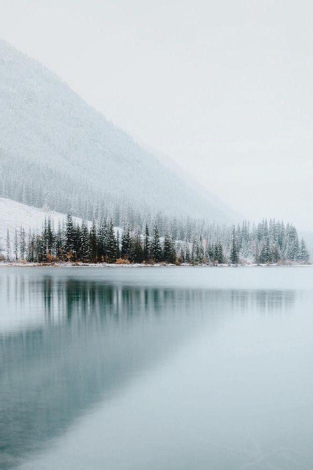 𝚙𝚒𝚗𝚝𝚎𝚛𝚎𝚜𝚝 𝚜𝚝𝚎𝚙𝚑𝚊𝚊𝚊𝚊𝚗𝚒𝚎 Winter Landscape Photography Winter Landscape Landscape Photography
