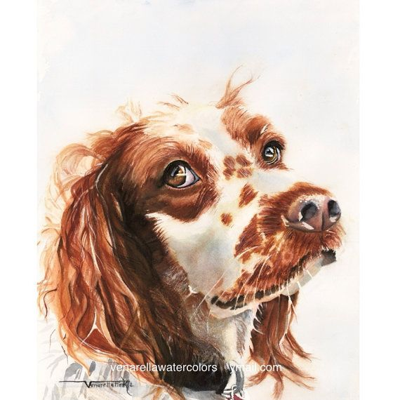 (To order a custom original watercolor of your pet please see Custom Pet Portrait listing) This is my first inspiration, my own rescued pup from American Brittany Rescue named Buddy Boy. The piece titled, Don't Move, is a portrait of Buddy Boy looking up at me wide-eyed, not wanting to disturb the squirrel he was about to chase in our small town back yard. He is my biggest and first inspiration to the dog portrait world. The Brittany has earned great popularity among millions of hunters…