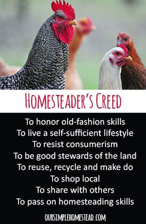 Homesteader's Creed