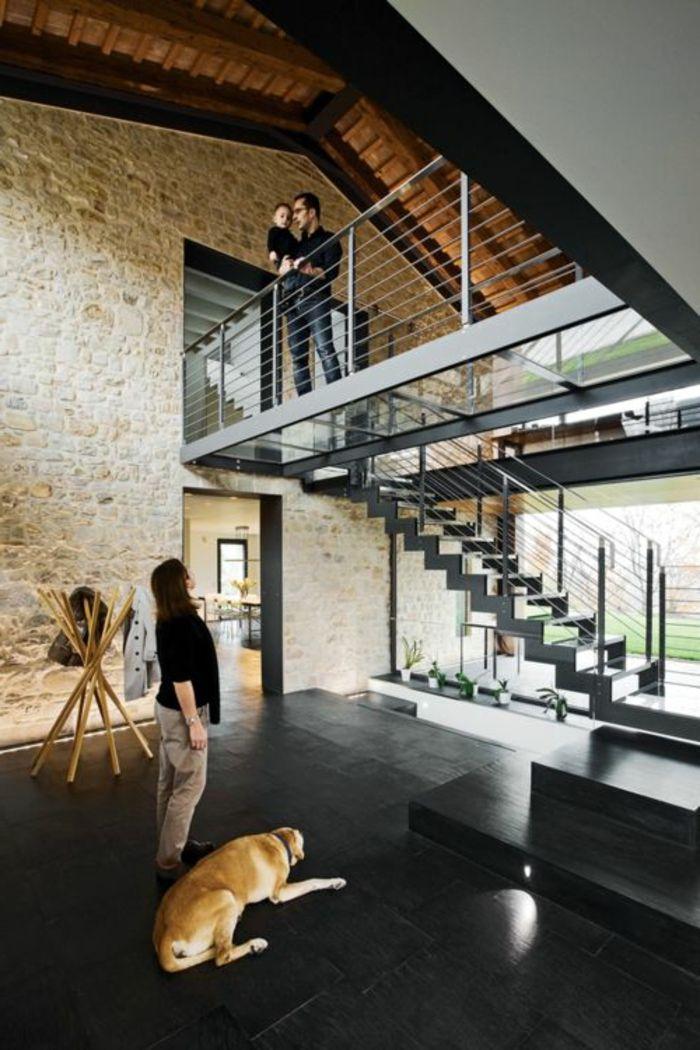 escalier en verre, sol en verre, carrelage transparent, maison moderne, sol noir, chien