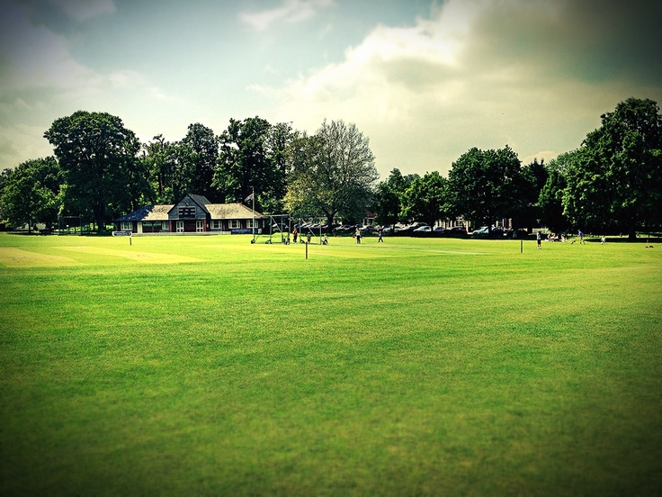 Hartley Wintney Cricket Green