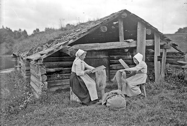 Nordic Thoughts: Scutching the flax http://nordic-aputsiaq.blogspot.co.nz/2012/10/scutching-flax.html