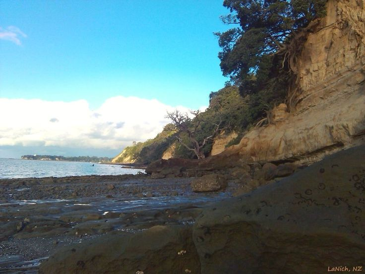 Gentleman's Bay, Auckland, New Zealand (by LaNich)