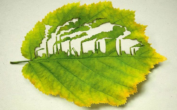 Vilão ou mocinho? O CO2 é o principal responsável pelo aumento do efeito estufa, mas apesar de ser um poluente, ele também age como um poderoso fertilizante