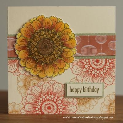 Corine's Gallery: Sunny Sunflowers Chocolate Baroque