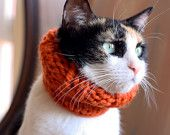oh. my. goodness.    ......the Penelope // knitted scarf chunky cowl for cats // Kitty Cowl in tangerine orange // cat accessory by theLOVEstitch // XSMALL XS size. $17.00, via Etsy.