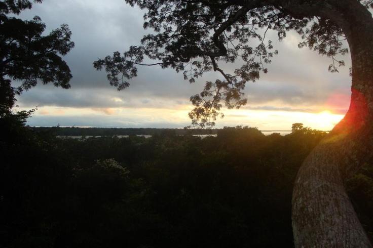 Atardecer en Amazonas desde una ceiba de 50 metros