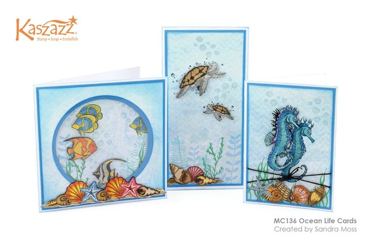 MC136 Ocean Life Cards More