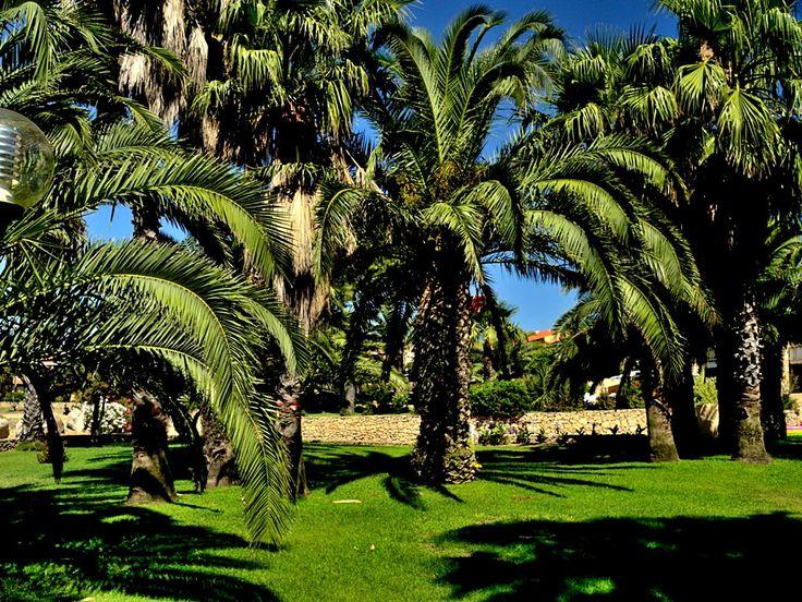Pleasant hotel resorts around coast of San Teodoro - Sardinia, Italy
