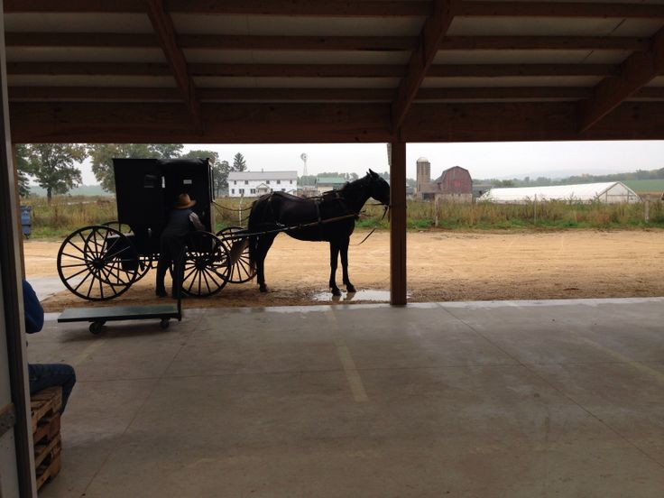 53 Best Cedar Chest Images On Pinterest Amish Furniture