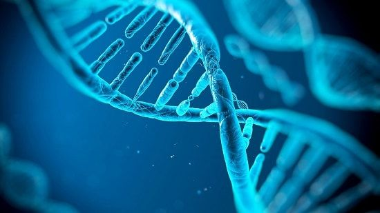 ADN-ul nostru este influențat nu doar de stilul nostru de viață ci și de cuvintele noastre    Cercetări ruseşti recente au găsit explicaţia unor fenomene ca intuiţie clarviziune autovindecări vindecări spontane influenţa mentalului asupra vremii etc. Grazyna Fosar şi Franz Bludorf demonstrează că ADN-ul poate fi influenţat şi reprogramat prin cuvinte gânduri şi anumite frecvenţe. Aceste descoperiri deschid calea unui nou tip de medicină în care ADN-ul poate fi reprogramat fără a-l secţiona…