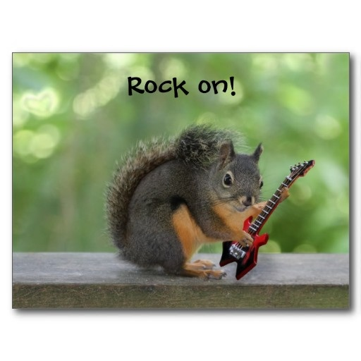 Squirrel Playing Electric Guitar