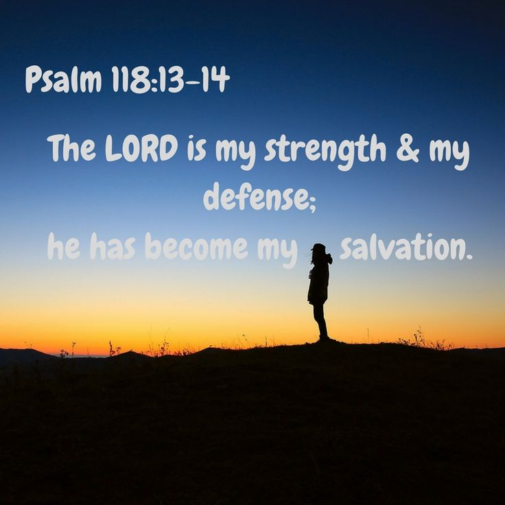 The LORD is my strength and my defense; he has become my salvation. - Psalm 118:13-14