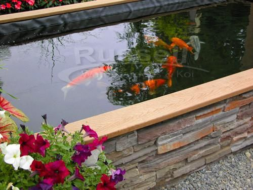 57 best ponds images on pinterest backyard ponds garden for Building a koi pond step by step