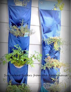Herb Gardening for the Home#/845872/herb-gardening-for-the-home?&_suid=136415494392307566460840424982
