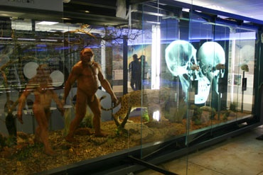 Sterkfontein Caves near Krugersdorp with 'early human' exhibitions