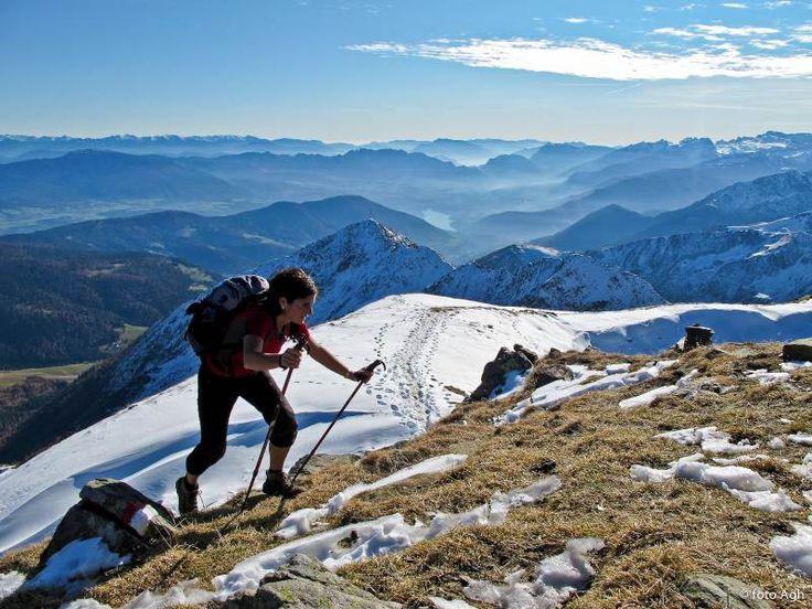 Piccola ma meravigliosa traversata da Cima Belmonte 2459 e Vedetta Alta m 2627, nelle splendida Catena delle Maddalene. Giro abbastanza facile anche se non banale, tratti di sentiero incerto ● http://girovagandoinmontagna.com/gim/ortles-cevedale-le-maddalene-vegaia-tremenesca/(maddalene)-cima-belmonte-2459-e-vedetta-alta-m-2627/